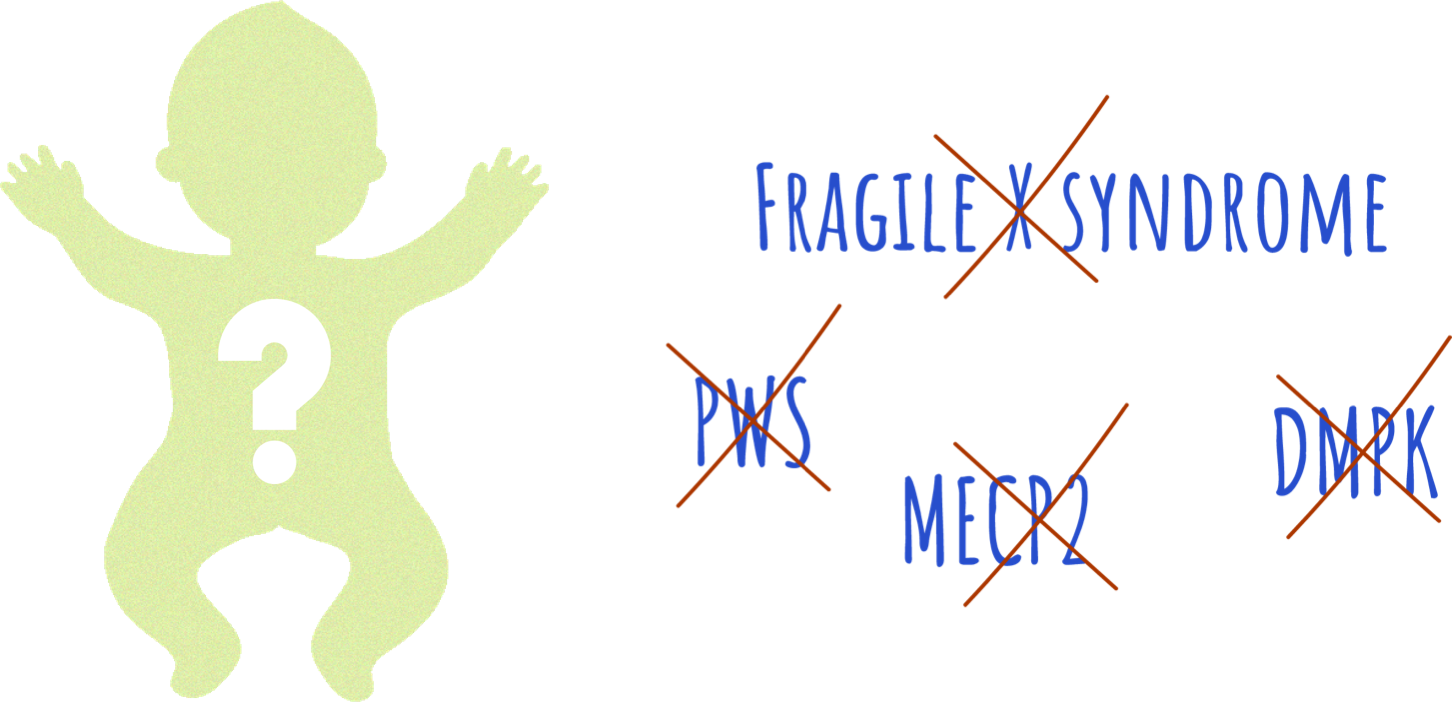 Fragile x syndrome, pws, mecp2, dmpk were all tested, but no positive results were found.
