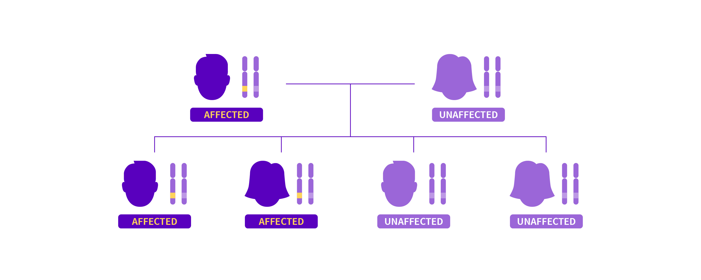 A family tree showing the autosomal dominant inheritance pattern of SSOAOD.