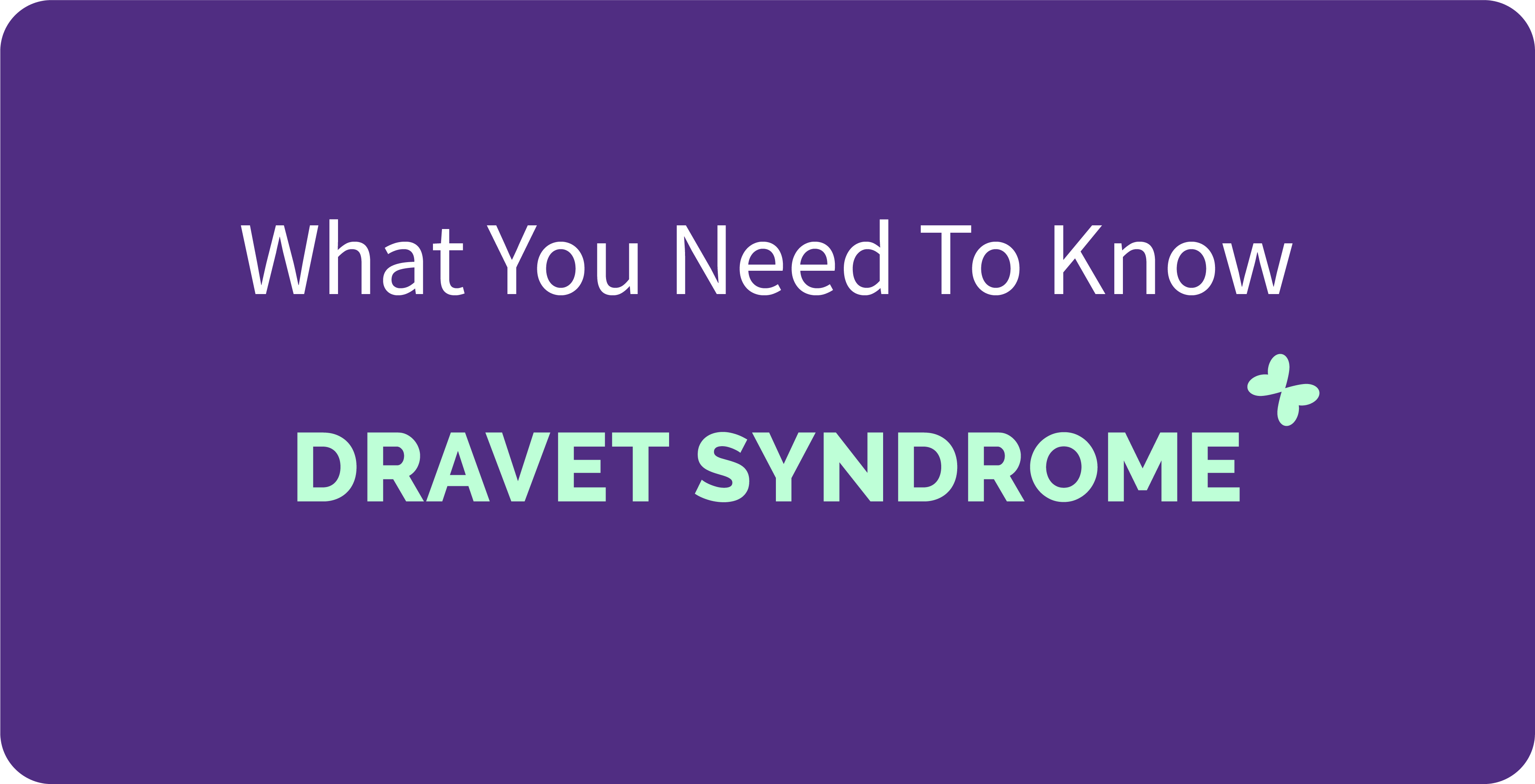 The cover of 'Rare Disease Series #14 DRAVET SYNDROME