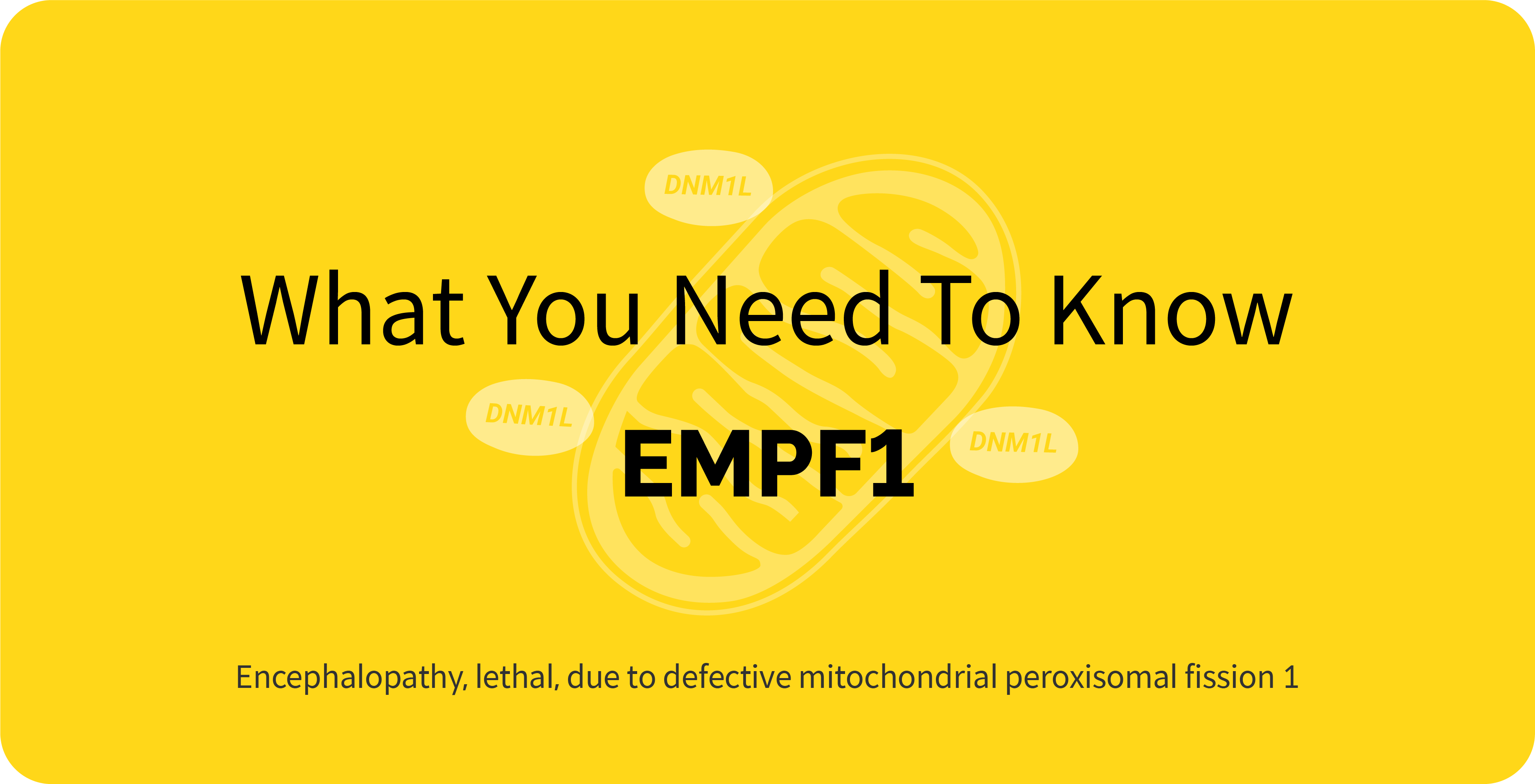 The cover of 'Rare Disease Series #19 Encephalopathy, lethal, due to defective mitochondrial peroxisomal fission 1 (EMPF 1)'