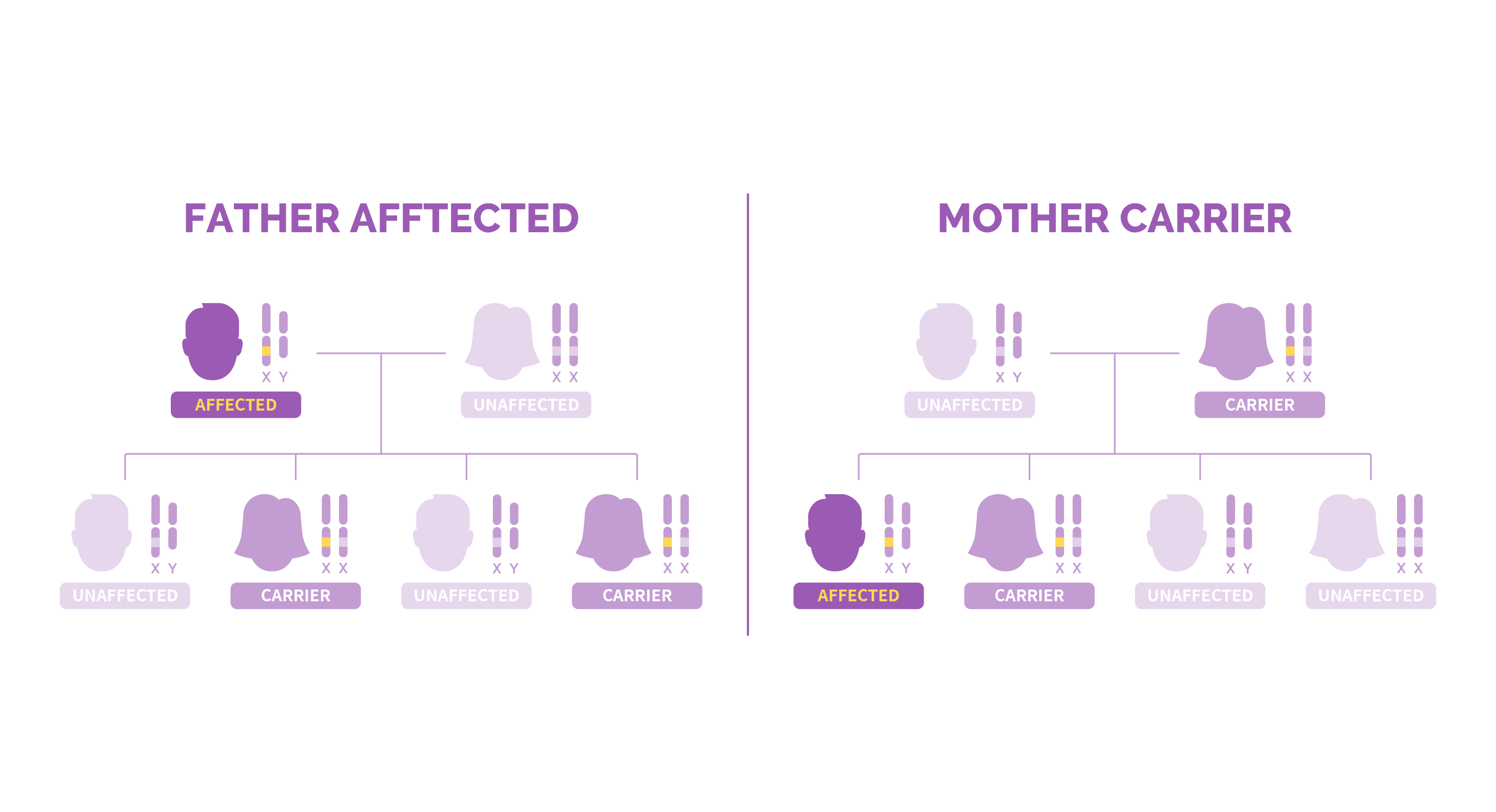 Two family trees showing both possible cases of X-linked recessive inheritance pattern.