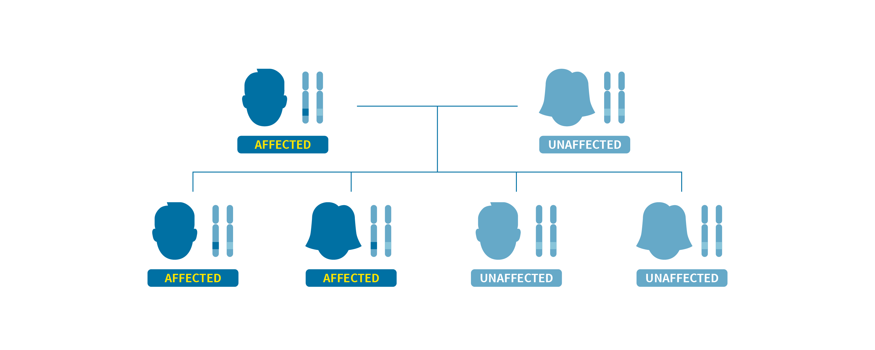 A family tree showing the autosomal dominant inheritance pattern of Coffin-Siris syndrome