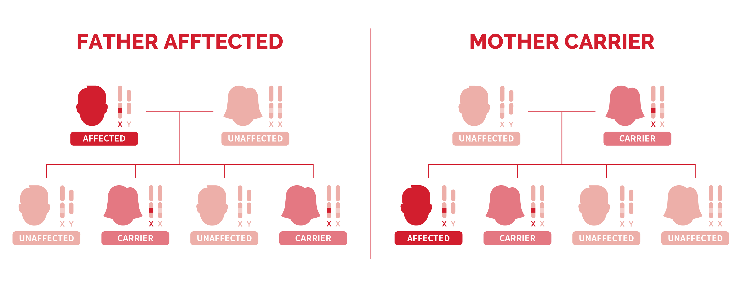 Two family trees showing the X-linked inheritance pattern of hemophilia in each case of parents affected.